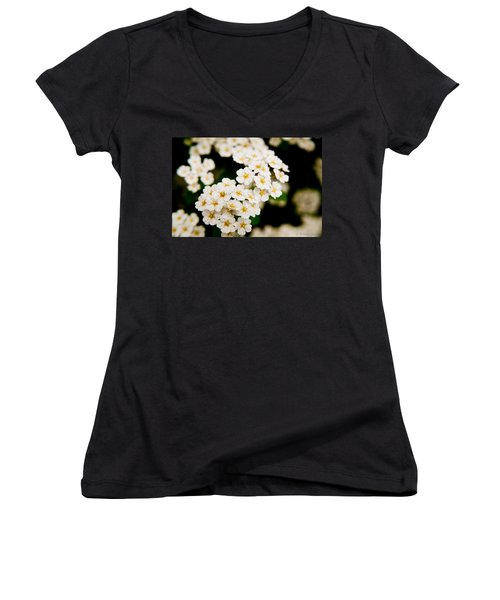 Bridal Veil Spirea Women's V-Neck T-Shirt