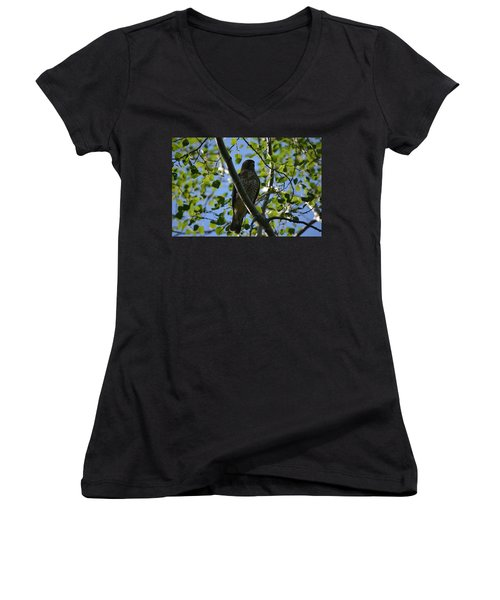 Women's V-Neck T-Shirt (Junior Cut) featuring the photograph Broad-winged Hawk by James Petersen