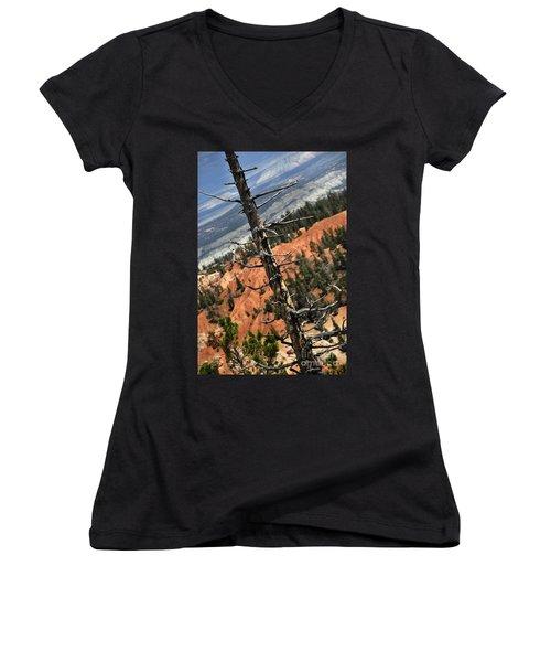 Bryce Tree Women's V-Neck T-Shirt