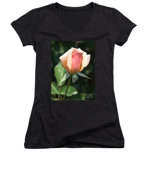 Budding Romance Women's V-Neck T-Shirt (Junior Cut) by Arlene Carmel