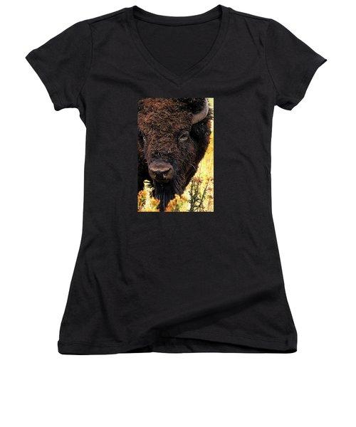 Ragweed Buffalo Women's V-Neck T-Shirt (Junior Cut) by Jim Pavelle
