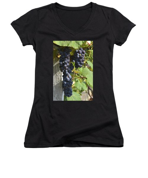 Bunches Of Grapes Women's V-Neck