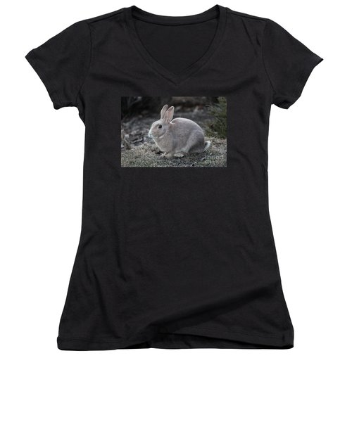 Bunny Women's V-Neck (Athletic Fit)
