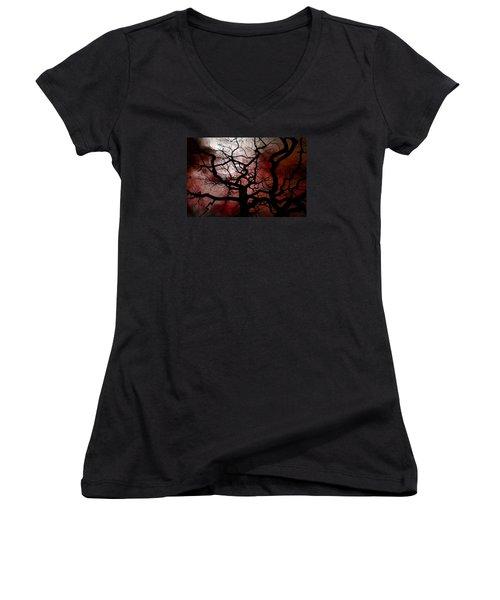 Reaching For The Moon Women's V-Neck T-Shirt