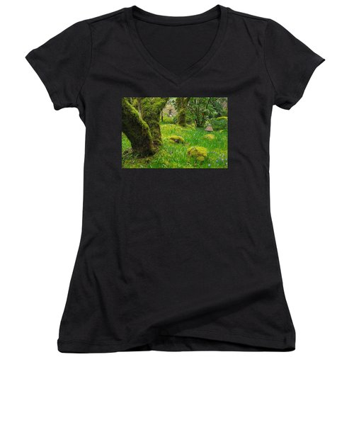 Women's V-Neck T-Shirt (Junior Cut) featuring the photograph Butchart Gardens - Vancouver Island by Marilyn Wilson