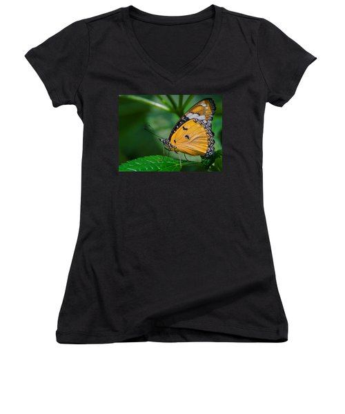 Butterfly  Women's V-Neck