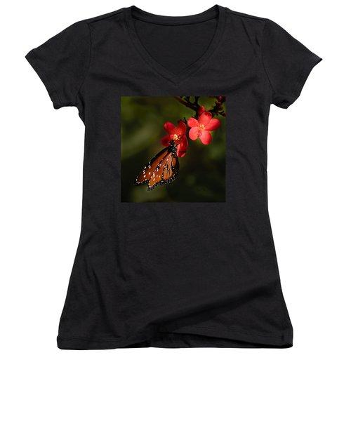 Butterfly On Red Blossom Women's V-Neck