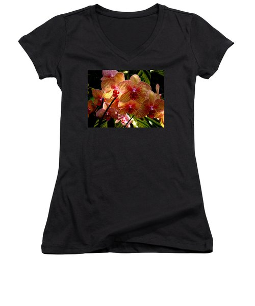 Women's V-Neck T-Shirt (Junior Cut) featuring the photograph Butterfly Orchids by Rodney Lee Williams