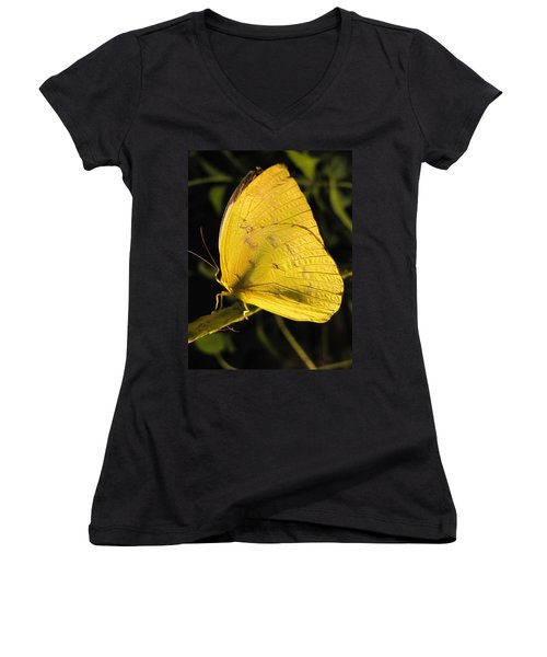 Butterscotch Women's V-Neck T-Shirt