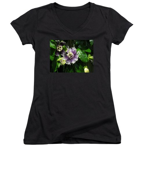 Women's V-Neck T-Shirt (Junior Cut) featuring the photograph Byron Beauty by Ron Davidson