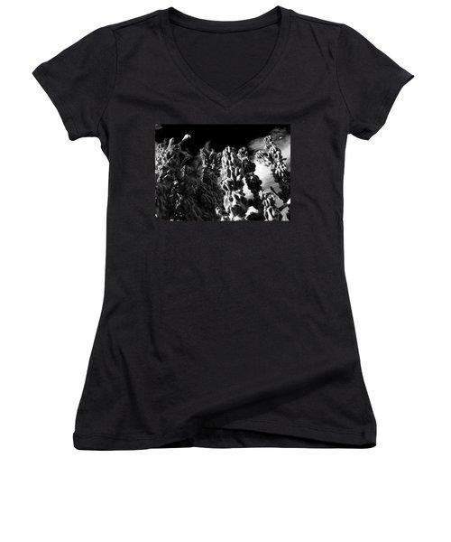 Women's V-Neck T-Shirt (Junior Cut) featuring the photograph Cactus 1 Bw by Mariusz Kula