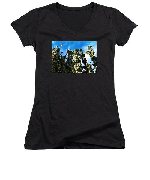 Women's V-Neck T-Shirt (Junior Cut) featuring the photograph Cactus 1 by Mariusz Kula