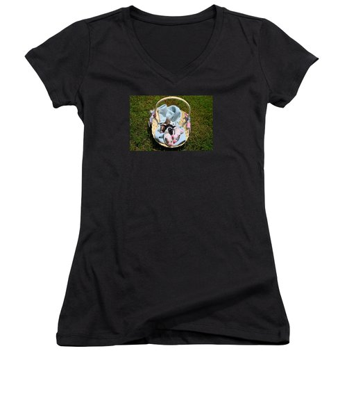 Calicos Pups At Two Days Women's V-Neck T-Shirt (Junior Cut) by Kathryn Meyer