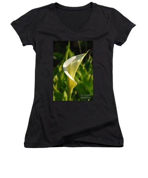 Calla Lily Women's V-Neck T-Shirt (Junior Cut) by Mary Carol Story