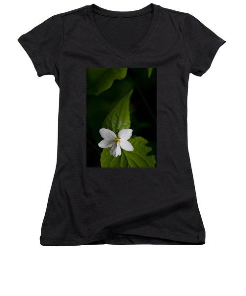 Canada Violet Women's V-Neck T-Shirt (Junior Cut) by Melinda Fawver