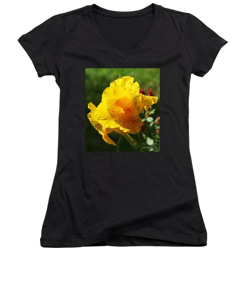 Canna Beauty Women's V-Neck