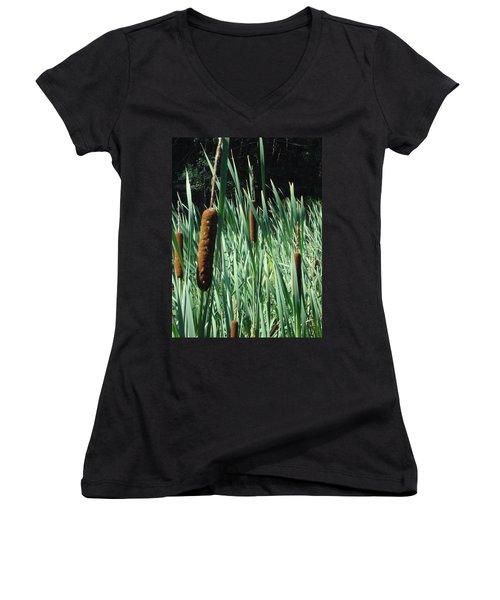 Cattails A Plenty Women's V-Neck T-Shirt (Junior Cut) by Michael Porchik