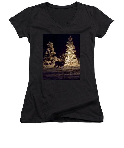Cautious Women's V-Neck T-Shirt (Junior Cut) by Aaron Aldrich