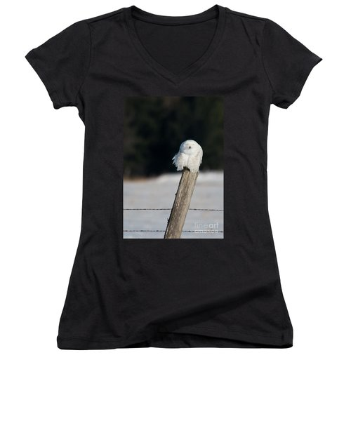 Cheeky Snowy Women's V-Neck T-Shirt