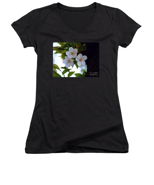 Women's V-Neck T-Shirt (Junior Cut) featuring the photograph Cherry Blossom by Andrea Anderegg