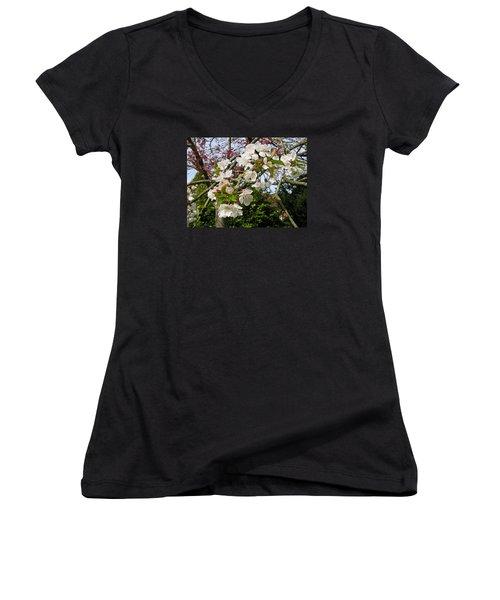Cherry Blossom In The Spring Women's V-Neck