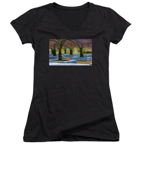 Chicago Art Institute South Garden Women's V-Neck T-Shirt