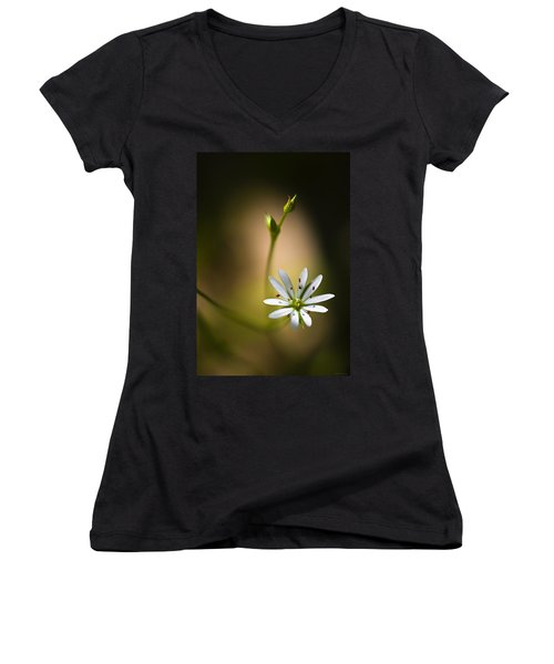 Chickweed Blossom And Bud Women's V-Neck (Athletic Fit)