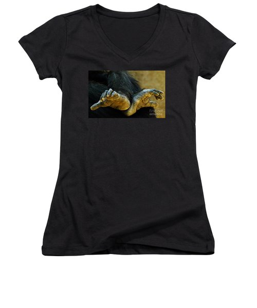Chimpanzee Feet Women's V-Neck T-Shirt (Junior Cut) by Clare Bevan