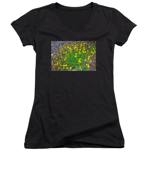 Chinchweed In Big Bend National Park-texas Women's V-Neck T-Shirt