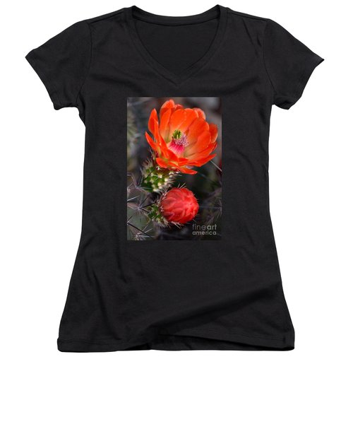 Claret Cup Cactus Women's V-Neck (Athletic Fit)