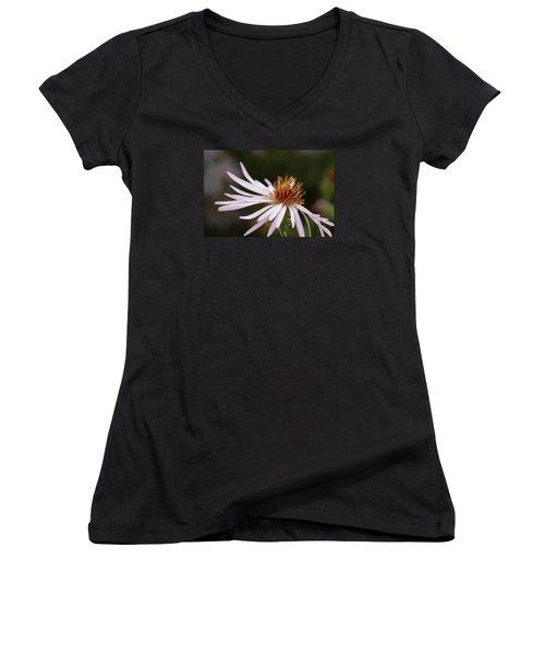 Women's V-Neck T-Shirt (Junior Cut) featuring the photograph Climbing Aster by Paul Rebmann