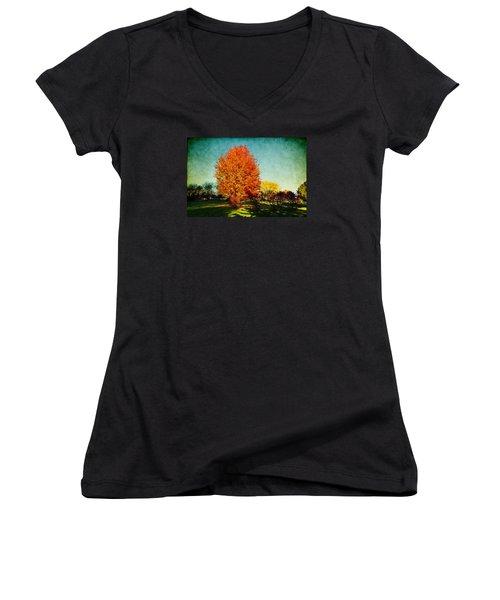 Colorful Autumn Women's V-Neck T-Shirt (Junior Cut) by Milena Ilieva