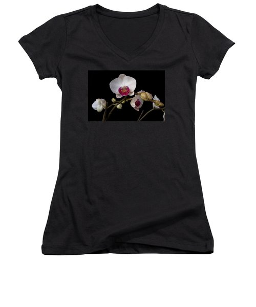 Colorful Moth Orchid Women's V-Neck (Athletic Fit)