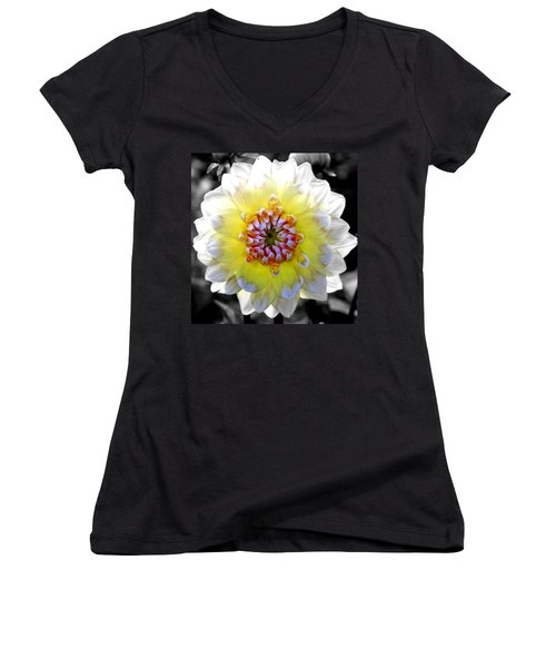 Colorwheel Women's V-Neck T-Shirt