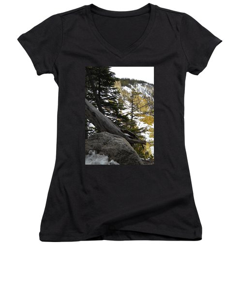 Women's V-Neck T-Shirt (Junior Cut) featuring the photograph Composition At Lower Falls by Michele Myers