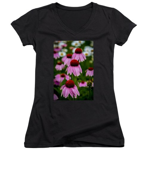 Coneflowers In Front Of Daisies Women's V-Neck T-Shirt