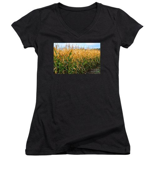 Corn Harvest Women's V-Neck T-Shirt (Junior Cut) by Terri Gostola