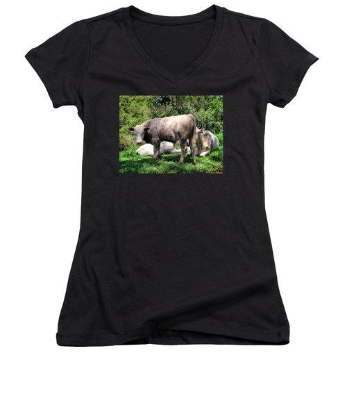 Women's V-Neck T-Shirt (Junior Cut) featuring the photograph Cow 5 by Dawn Eshelman