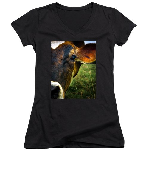 Cow Eating Grass Women's V-Neck (Athletic Fit)