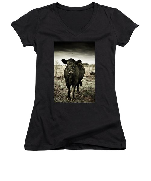 Cow In The Winter Pasture  Women's V-Neck (Athletic Fit)