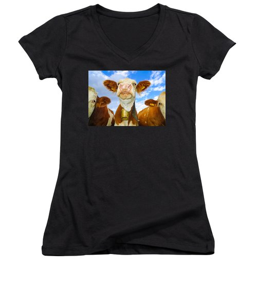 Cow Looking At You - Funny Animal Picture Women's V-Neck