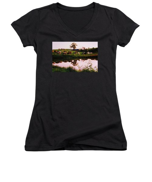 Cows In The Canal Women's V-Neck T-Shirt (Junior Cut) by Martin Howard