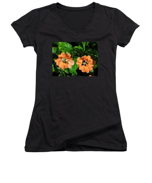 Women's V-Neck T-Shirt (Junior Cut) featuring the photograph Crossandra by Ron Davidson