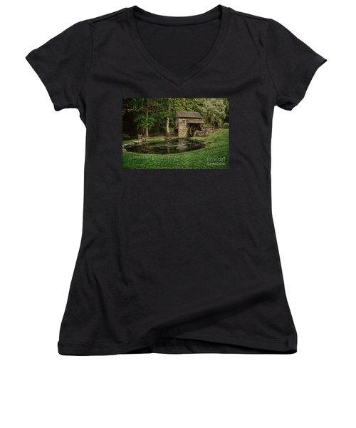 Cuttalossa Farm In Summer I Women's V-Neck T-Shirt (Junior Cut)