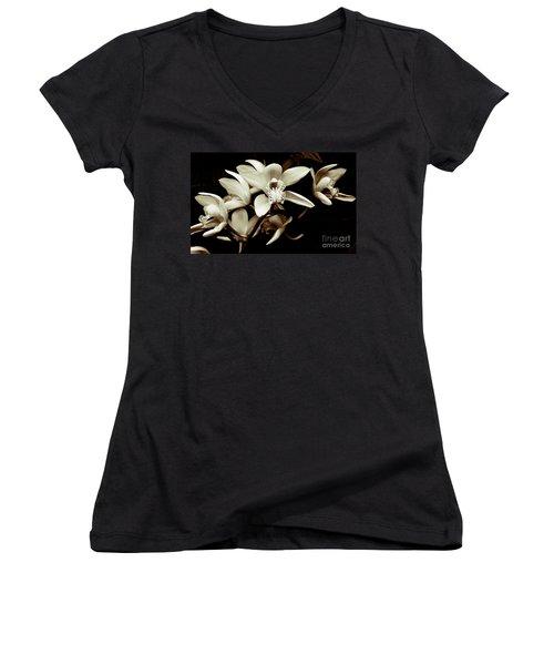 Cymbidium Orchids Women's V-Neck T-Shirt
