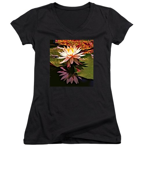 Cypress Garden Water Lily Women's V-Neck T-Shirt (Junior Cut) by Bill Barber