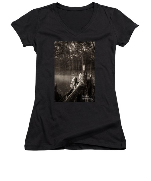 Cypress Knees In Sepia Women's V-Neck