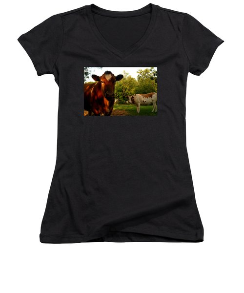 Dads Cows Women's V-Neck T-Shirt