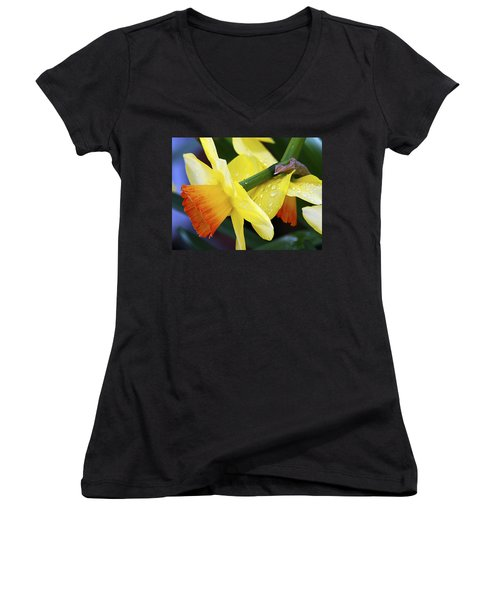 Women's V-Neck T-Shirt (Junior Cut) featuring the photograph Daffodils With Rain by Joe Schofield