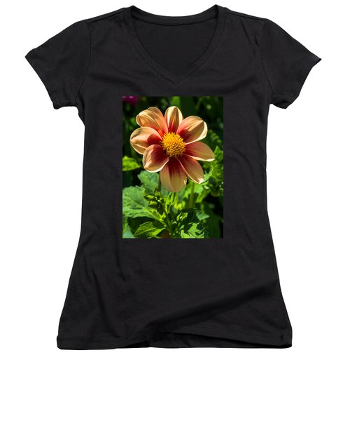 Dahlia 4 Women's V-Neck T-Shirt